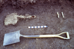 Bardown, remains of a Roman iron shovel with modern shovel for comparison: photo H. Cleere
