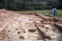 Bardown, general view of  excavations: photo H. Cleere