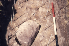 Consolidation hearth rh2 before excavation: photo F. Tebbutt