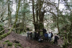 WIRG Members in Lambsquay Wood