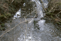 View of the site with stream in spate: photo J. Hodgkinson