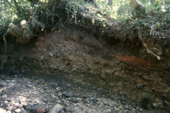 Eroded stream bank section of slag heap 1989: photo R. Barnes