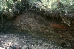Eroded stream bank section of slag heap: photo R. Barnes