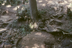 Gun casting pit with site of furnace behind 1989: photo R. Barnes