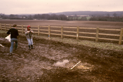 Roffey, possible smithing hearth base (Dot Meades to left): photo J. Hodgkinson