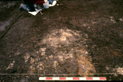 Roffey, possible smithing hearth base during excavation: photo J. Hodgkinson