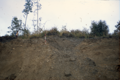 Section of quarry face showing a filled-in minepit: photo F. Tebbutt