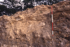 Section of quarry face showing a filled-in minepit: photo J. Hodgkinson