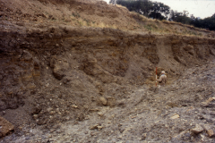 General view of quarry face showing sections of minepits: photo J. Hodgkinson