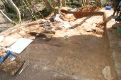 Thorp's Wood excavation 2013: photo J. Hodgkinson